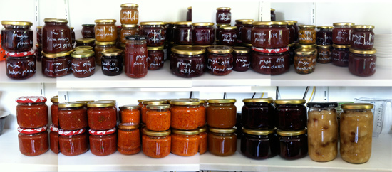 September 2014 canning and jams