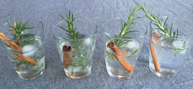 gin-tonic-rosemary-cinnamon