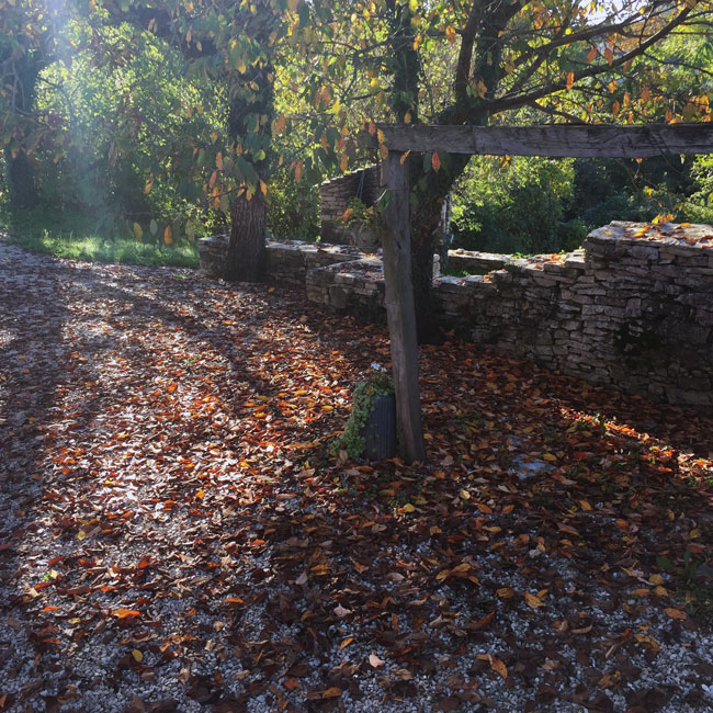 Autumn sunshine at Pruga